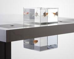 Acuario 'Milk desk', by Soren Kjaer