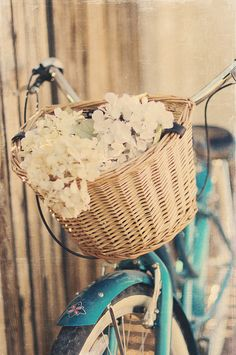 Flowers in a basket, vintage bicycle.