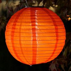 By day, this attractive all-weather lantern helps to enhance the outdoor décor of any backyard or patio. Once sun sets, however, the solar elements of this eco-friendly piece light up, providing gentle illumination wherever it's hung. Solar Powered Lanterns, Japanese Lighting, Night Garden, Backyard Lighting, Table Top Display, Patio Umbrellas, My Secret Garden, Unique Lighting, Lanterns