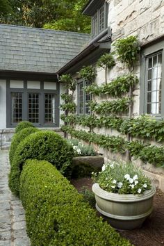French Parterre Flowers, Plants & Planters Landscapes