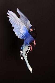 Blue Magpie 2013, Colombian artist Diana Beltran Herrera specializes in life-like portrayals of birds in paper
