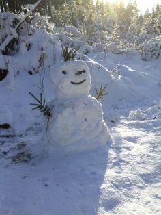 Auf der Hohen Acht, dem höchsten Berg der Eifel, lag am Neujahrstag zentimetertiefer Schnee. Zusammen mit meiner fröhlichen Wandertruppe und diesem Schneemann blicke ich in die schneebedeckte Weite und wünsche allen ein frohes neues Jahr 2015.