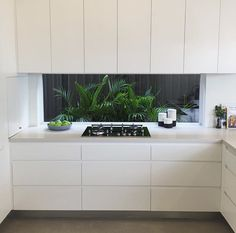 """Caesarstoneau: """"Clever planting combined with a window splashback adds space, light and colour to this Fresh Concrete kitchen. Home Decor Kitchen, Kitchen Interior, New Kitchen, Home Kitchens, Kitchen Dining, Cheap Kitchen, Glass Kitchen, Green Kitchen, Country Kitchen"""