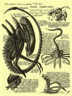 Alien life cycle - Da Vinci style | HR Giger's famous nightmarish alien.