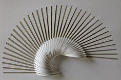 {FRACTAL DIMENSION} Torus Elastica Lemniscate paper folding techniques