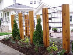 DIY Garden Trellis out of pressure treated wood and cattle fencing