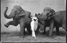 写真家『Richard Avedon』【MデザイナーのファッションSTYLE】の画像:AUD-BLOG:メンズファッションブランド【Audience】を展開するアパレルメーカーのブログ