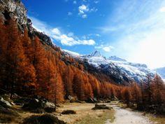 Gran Paradiso National Park, Italy