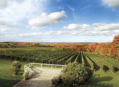 Traverse City Wine Country  #puremichigan