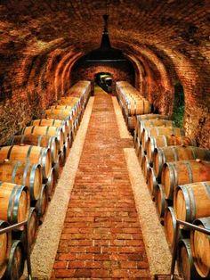 Wieninger Wine Cellar Vienna Austria