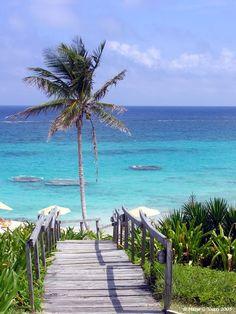 Coco Reef Resort - Bermuda.