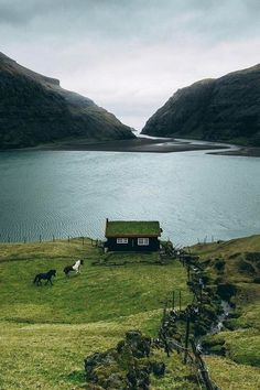 norwegian architecture old Its a Mans World - Saksun, Faroe Islands The Places Youll Go, Places To Go, Wonderful Places, Beautiful Places, Faroe Islands, Adventure Is Out There, Belle Photo, Beautiful Landscapes, Beautiful World