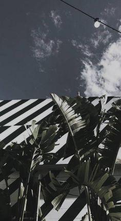 Art dog drawing - Drawing Tips Wallpaper Tumblr Lockscreen, Wallpaper Marvel, Iphone Wallpaper Vsco, Trendy Wallpaper, Pastel Wallpaper, Black Wallpaper, Screen Wallpaper, Cute Wallpapers, Phone Wallpapers
