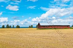 Lato - lato punainen pelto kesä maalaismaisema maatalous katto puinen puuta peltikatto hirsiseinä Kajaani Kainuu