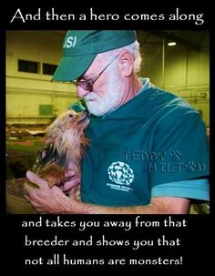 A hero saving a yorkie This breaks my heart. I own 2 sweet yorkies and know how soulful and intelligent this breed is. A tiny creature as a yorkie who is suffering makes me cry.