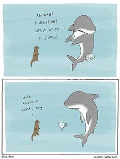 shark tumblr - Cerca con Google