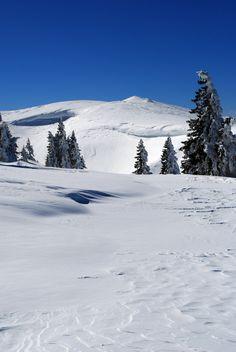 Mont Tendre (1679m) par le col du Marchairuz