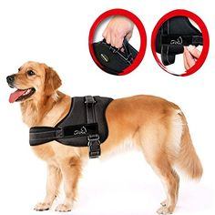 nice Lifepul(TM) No Pull Dog Vest Harness - Dog Body Padded Vest - Comfort Control for Large Dogs in Training Walking - No More Pulling, Tugging or Choking