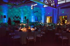 Nature - Tree - room lighting - blue - green - night sky - Bnai, Bar, Bat Mitzvah - Design by DB Creativity - laura@dbcreativity.com  Photo by Maxx & Me Photography