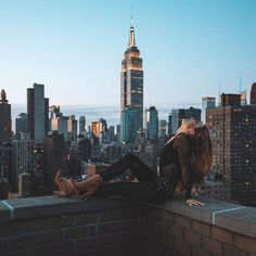 I LOVE YOU  Tag someone you want to visit New York with