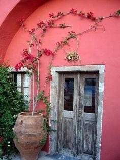 Beautiful pink wall, love the bougainvilla