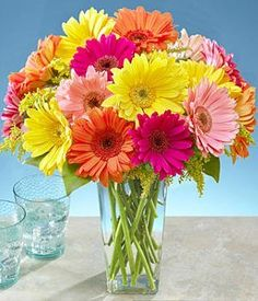 Gerberas bouquet in vase