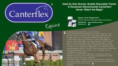 I started using canterflex on a trial basis. I found that almost immediately my horses that had a bit of wear and tear in their joints responded positively on the training track, with a noticeable freedom in their actions. Alan Scorse