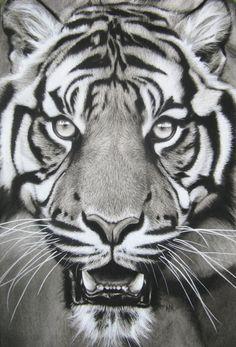 jaw drop by burnt-sticks on DeviantArt Tiger Face Tattoo, Cheetah Tattoo, Tiger Tattoo Sleeve, Tiger Tattoo Design, Tiger Design, Sleeve Tattoos, Tigergesicht Tattoo, Grey Tattoo, Body Art Tattoos