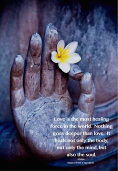 Love heals the body, the mind, and the Soul.