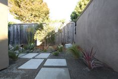 mcm landscape - decomposed granite, pavers, grasses