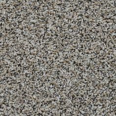 give your home a accent by adding this adventurous color woodland carpet resists fading for added durability