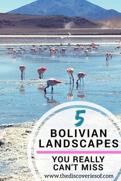 5 Awesome Landscapes You Won't Want to Miss in Bolivia. Honestly Amazing.