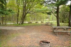Bass Lake Provincial Park Ontario Canada Ontario Parks, Bass Lake, Canada, Camping, Outdoor Decor, Image, Campsite, Campers, Tent Camping