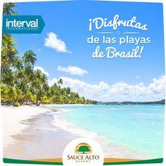 Sauce Alto | Interval International | Disfruta de las playas de Brasil.