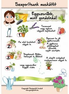 Home Vegetable Garden, Herb Garden, Garden Plants, Succulent Gardening, Gardening Tips, Garden Journal, Garden Styles, Geraniums, Amazing Gardens