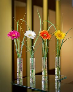 Silk gerbera daisy and grass along with a tornadic twist of floral wire in our acrylic water creates this whimsical accent. This silk floral accent will make a great gift for the desk or tabletop.