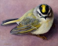 http://www.carolguzman.com/art/carol_guzman_a_closer_look_golden_crowned_kinglet_450.jpg