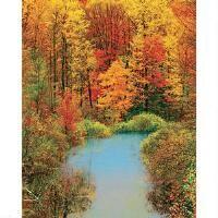 Springbok® Autumn Reflection Jigsaw Puzzle
