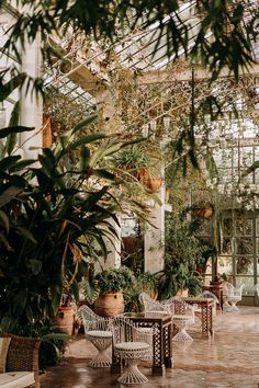We are swooning over this Greenhouse Wedding in Marrakesh! Photo: @lorenzoaccardi.photography Greenhouse Wedding, Garden Wedding, Boho Wedding, Wedding Blog, Destination Wedding, Wedding Ideas, Hair Stations, Styling Stations, Marrakech