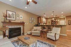 Traditional Living Room with Hardwood floors, metal fireplace, flush light, Carpet, Ceiling fan