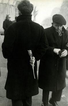 Robert Frank - Tulip, Paris, 1950