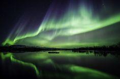 Icelandic Insights