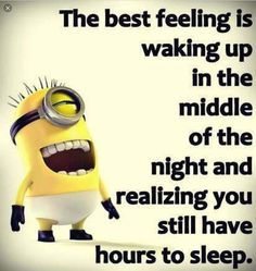 Minions have now millions of fans around the globe and they are actually getting over the internet by storm, they are cute, adorable do stupid things and are hell of fun . So here are some great Funny Minions quotes, enjoy them! Minion Humour, Funny Minion Memes, Minions Quotes, Funny Relatable Memes, Minions Cartoon, Evil Minions, Funniest Memes, Cute Funny Quotes, Really Funny Memes