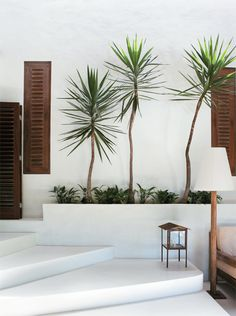 a rustic chic beach house in brazil Interior Design Magazine, Outdoor Landscaping, Outdoor Gardens, Florida Landscaping, Outdoor Plants, Outdoor Pool, Landscaping Ideas, Outdoor Decor, Exterior Design