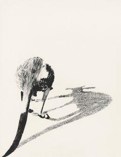"""livre de bord - """"Voir sans être vu"""" exposition Gilles Aillaud"""
