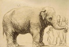 An Elephant (sketch) by Rembrandt | Lone Quixote | #art #arte #rembrandt #elephants #artists #animals #sketch