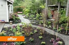 Before & After: A Barren Backyard Is Brought Back to Life — Studio G