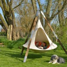 Family chilling in a cacoon hammock tripod with the pup http://hammocktown.com/products/double-cacoon-hammock-natural-white