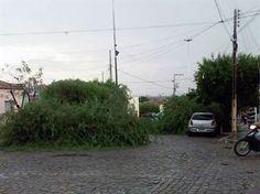 Chove granizo no Sertão da Paraíba e moradores usam a internet para relatar estragos | Gavião da Paraíba