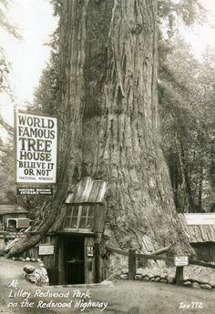 California, 1930s